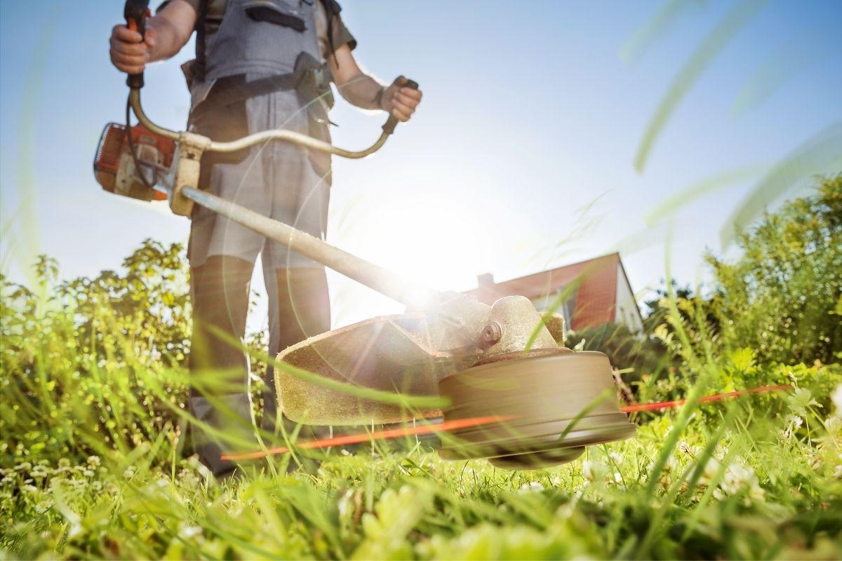 Mężczyzna koszący trawnik przy użyciu kosy spalinowej z wypożyczalni BMK Rzeszów