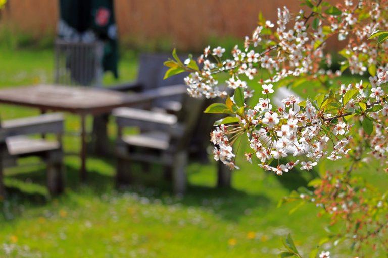Jak przygotować taras lub balkon do sezonu wiosenno-letniego?